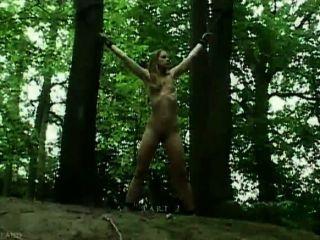 Claudie amarrado na floresta e fodido