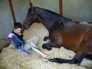 Menina e cavalo www.sex stories.xxx