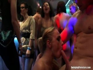 Pintainhos sexy do partido que fodem na orgia do clube
