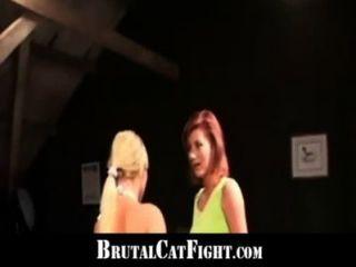 Dois sluts brutal catfights por causa de um telefonema barulhento