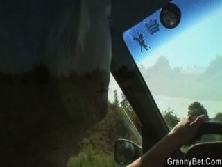 Velha cadela é pregada no carro por um estranho