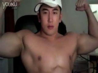 Músculos asiáticos e bears.com