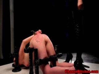 Lezdom mistress espalhando sua buceta sub