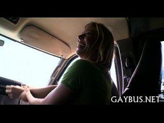 piada selvagem andando dentro de um carro