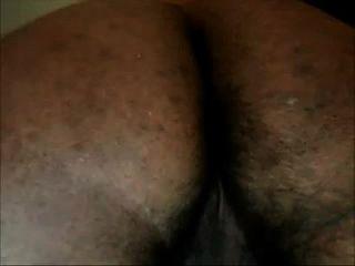 pelicus indian ass 2