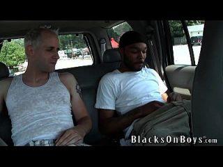 Casey Clay tem sua primeira experiência com um galo preto