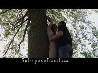 aproveitado para um carrinho, o escravo adolescente carrega seu mestre