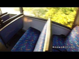 Frangos amadores britânicos peludos em ônibus público