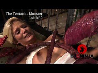 Tentáculo