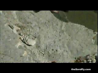 Thesandfly brilhante praia lamber, chupar \u0026 foda fest
