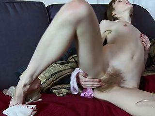 Vasilisa dedos seu bichano peludo