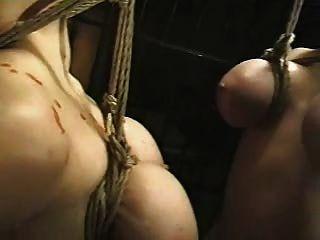 Suspensão asiática da mama