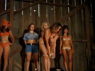 Mulheres, descascamento, fase, 1972