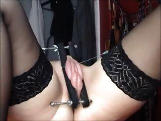 Tortura o bichano