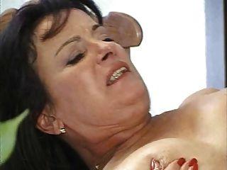 Bichano maduro peludo