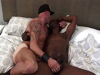 Uma puta é fodida crua por galo preto grande