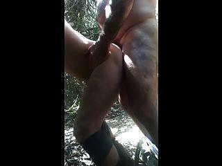 Urso de papai fode filhote