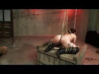 Shibari corda bondage e palmada