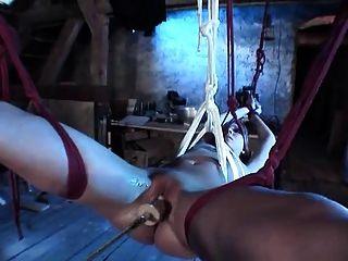 Amarrada loura hottie com pussy raspado batido por máquina