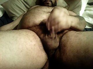 Uncut urso grande barriga peluda