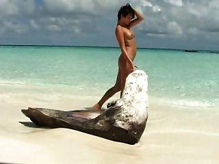 Girlie morena joga com ela pussie raspado na praia