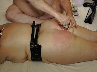 Chicote de burros e tortura