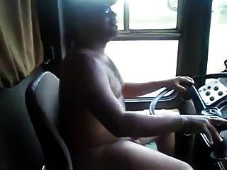 Camionista despido do urso!