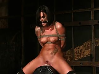 Miss evans absorve o sybian