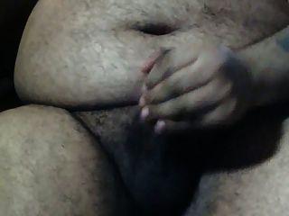 Urso de barriga grande sozinho no escritório
