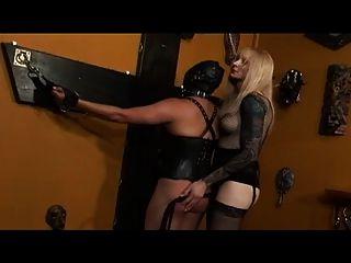Shemale dominadora domina tranny slave