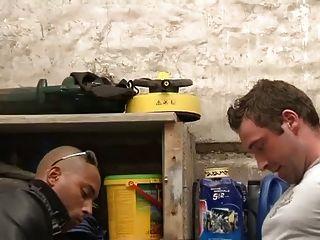 Beurette baisee dans la cave
