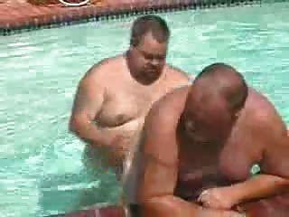 Gordos na piscina