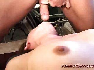 Coelho quente asiático obtém deepthroat e anal sexo fodido