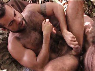 Dos peludos follando na selva