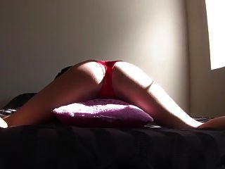 Menina morena sexy travesseiro humping em calcinhas vermelhas