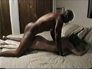 Marido como assistir sua esposa foder um touro preto