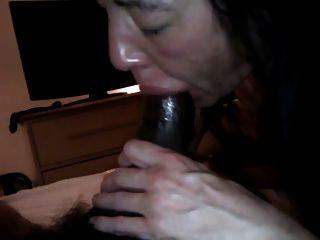 Cabeludo, bichano, vietnamita, inquilino