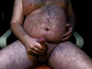 pau gordo de barriga