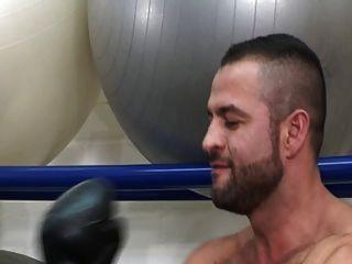 boxeadores de musculação