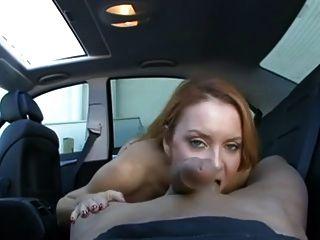 Cavalo maduro, grande galo no carro
