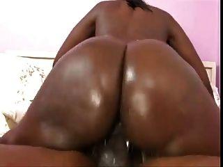 grande burro preto montando o pau (clipe)