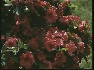 Clássica britânica slut louise fica fodida no jardim
