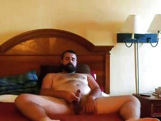 paja de oso barbudo beijos de urso na cama
