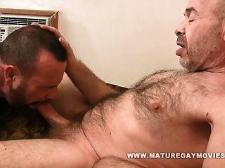 urso muscular fodido bom por amigo maduro