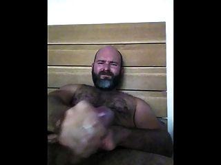 pajote de oso