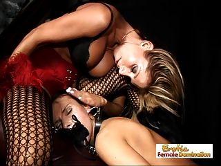 escolher o escravo certo é difícil para a amante morgan
