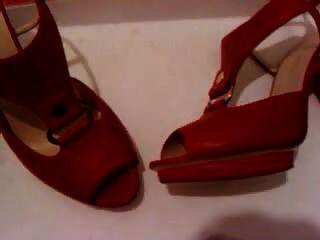 sapatos femininos sapatos cum3