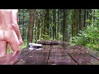 bdsm ao ar livre sob chuva na floresta