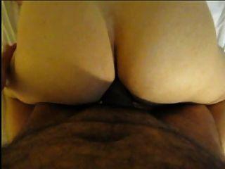 galo árabe gordo dentro do burro sérvio