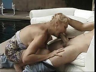 o grande puma titado está ficando bichano licked por um galo espesso